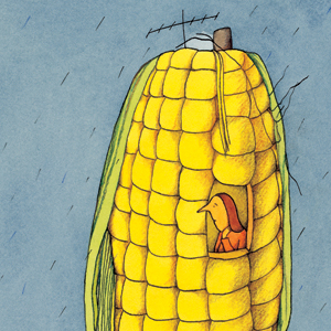 corn_300